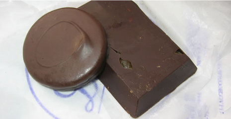 Lilac_chocolate_1